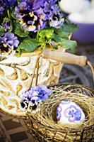 Easter arrangement of violas in plant pot & Easter