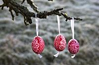 Three painted Easter eggs hanging on branch of app