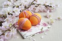 Sprigs of cherry blossom & dyed eggs wrapped with