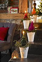 Father Christmas candles in flower pots on a fligh