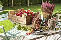 Подборка садово-приусадебного декора