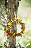 Wreath of rose hips and yellow flowers hung on tre