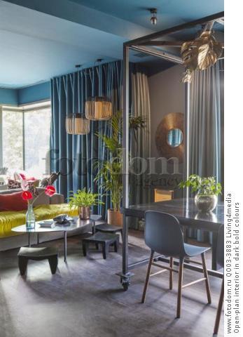 Open-plan interior in dark bold colours
