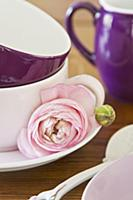 Pink ranunculus flower and bud next to stacked tea