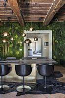 Green walls in luxurious dining room
