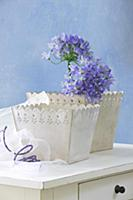 Blue agapanthus in one of two romantic pots with o