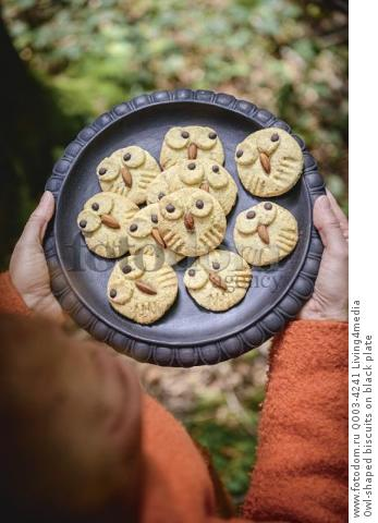 Owl-shaped biscuits on black plate