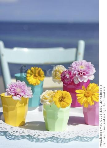 Dahlias, roses and marigolds in beakers