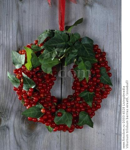 Viburnum trilobum berries wreath, (snowball)