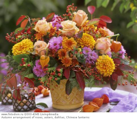 Autumn arrangement of roses, asters, dahlias, Chinese lanterns