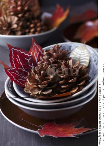 Stacked bowls, pine cones and painted autumn leaves