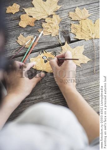 Painting an owl's face on a pressed autumn leaf