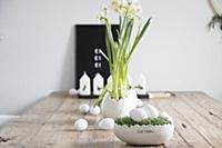 Easter arrangement of cress nest with white eggs,