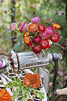 Autumn arrangement of zinnias and everlasting flow