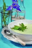 Шелковистый суп со щавелем и черемшой