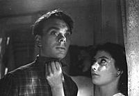 Кадр из фильма «Летят журавли», (1957).