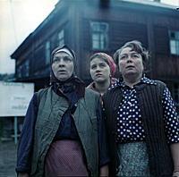 Кадр из фильма «Любовь и голуби», (1984).