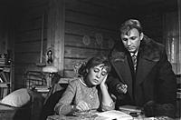 Кадр из фильма «Девчата», (1961).