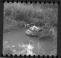 Кадр из фильма «Зеркало», (1974).