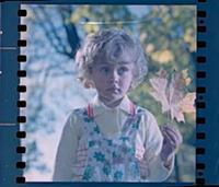 Кадр из фильма «Автомобиль, скрипка и собака Клякс