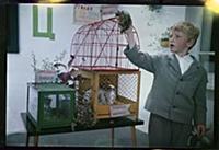 Кадр из фильма «Внимание, черепаха!», (1970).