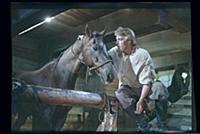 Кадр из фильма «Хождение за три моря», (1957). На