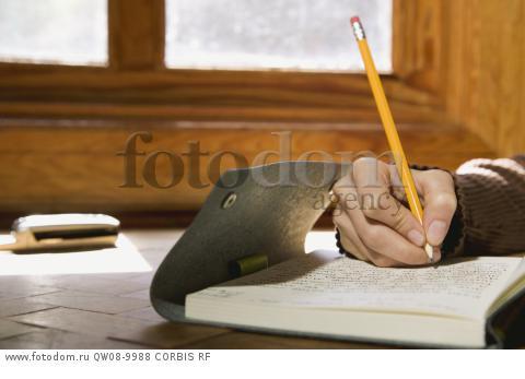 unimelb school of historical studies essay writing guide