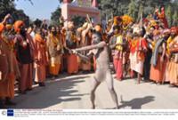 Религиозный праздник Кумбха-мела (Kumbh Mela) в Ин