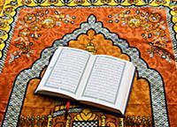 Коран на молитвенном коврике, 7 мая 2013.