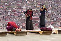 Самая большая в мире школа буддизма - Тибетский мо