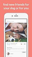 Tindog - приложение для знакомства с другими хоязевами собак