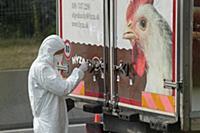 В Австрии найдены мертвые мигранты в грузовике