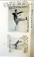 Пособие Брюса Ли по боевым искусствам