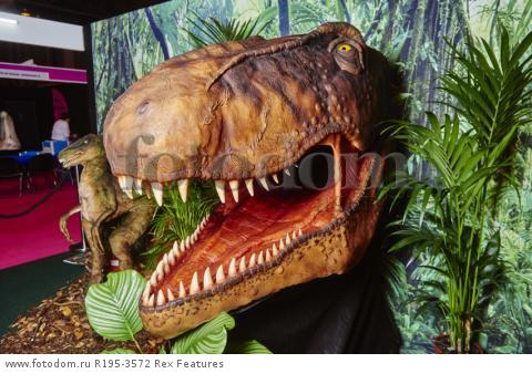 MANDATORY CREDIT: Cake International/REX Shutterstock. Only for use in this story. Editorial Use Only. No stock, books, advertising or merchandising without photographer's permission