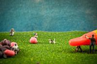 MANDATORY CREDIT: Jason Hilt/REX Shutterstock. Onl