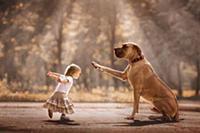Дети и их собаки