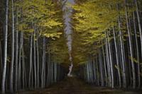 MANDATORY CREDIT: Garret Suhrie/Rex Shutterstock.
