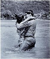 FILM STILLS OF 'BLUE HAWAII' WITH 1961, BEACH, JOA
