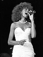 Whitney Houston Berliner book