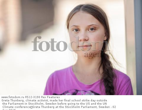Greta Thunberg, climate activist, made her final school strike day outside the Parliament in Stockholm, Sweden before going to the US and the UN Climate conference Greta Thunberg at the Stockholm Parliament, Sweden - 02 Aug 2019