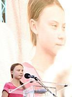 Greta Thunberg Global Strike for Climate Change, N