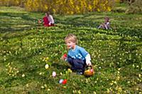boy finding easter eggs