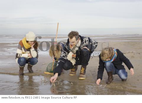 Mid adult parents with son and daughter searching for seashells on beach, Bloemendaal aan Zee, Netherlands