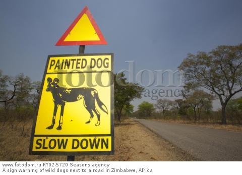 A sign warning of wild dogs next to a road in Zimbabwe, Africa