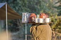 Tea time on a walking safari, Zambia, Africa