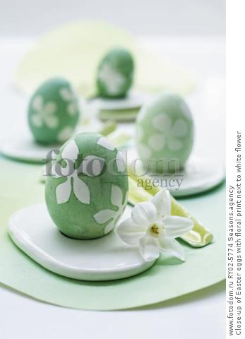 Close-up of Easter eggs with floral print next to white flower