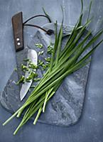 Oriental garlic-chives on a grey marble board with