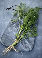 Laos coriander on a grey marble board