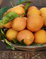 Blood oranges with leaves in a ceramic bowl