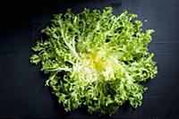 Curly lettuce (top view)